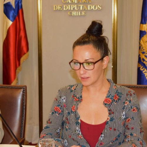 """[La Tercera] Marisela Santibáñez: """"Con Heraldo Muñoz se cerraron puertas para el progresismo"""""""