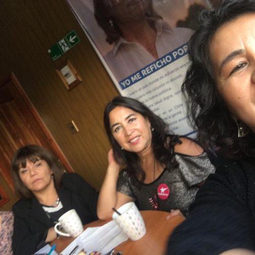 Frente de mujeres Políticas de Oposición en La Araucanía organizan encuentro de reflexión