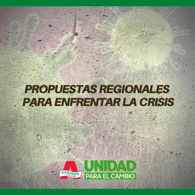 Propuestas para la Región de Antofagasta en medio de la crisis sanitaria