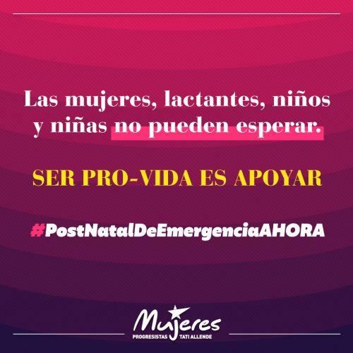 """Postnatal de emergencia: Dirigentas de oposición llaman al Ejecutivo a tomarse en serio el slogan """"los niños primero"""""""