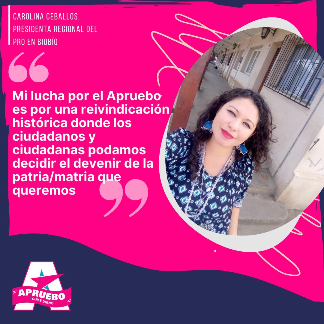"""Carolina Ceballos, presidenta regional del PRO en Biobío: """"Mi lucha por el Apruebo es por una reivindicación histórica donde los ciudadanos y ciudadanas podamos decidir el devenir de la patria/matria que queremos"""""""